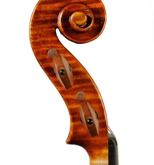 Violino Di Pietrantonio
