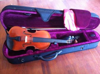 violino FarEast fenice-preludio
